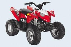 Чем уникален квадроцикл и какую конкретно модель заказать для решения сельских задач?